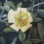 redland yurara art society - art for sale - 'Mystery Flower - 'Arja Tossavainen painting - white lilly flower - surrounding leaves
