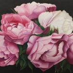 redland yurara art society art for sale - 'Peonies' Christine Pugh - painting - white and pink - peonie blooms