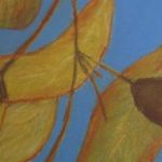 redland yurara art society - autumn exhibition - leaves - painting - 'Gum Leaves'- Jacqui Selke-Pike - Pastel on Paper - Framed - gum leaves - gum nuts