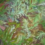 redland yurara art socierty - my queensland - online art exhibition - painting - 'Carpet of Ferns' Danielle Bain - Watercolour and Acrylic - Canvas Board