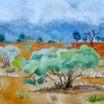 Redland Yurara Art Society - 'Storm in the Gidgee' - Danielle Bain - Watercolour - Framed - Painting - Art Exhibition - Outback Australia