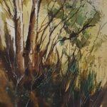 Redland Yurara Art Society - 'Habitat' - Philip Van Niekerk - Watercolour - Painting - Art Exhibition - Major Spring Art Exhibition