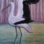 Redland Yurara Art Society - 'Jabiru' - Peter Veal - Watercolour - Painting - Art Exhibition - Watercolours