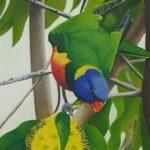 Redland Yurara Art Society - 'Lorikeet' - Christine Pugh - Oil - Painting - Art Exhibition - The Holiday Collection