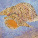 Redland Yurara Art Society - 'Shells' - Tarja Rantala - Acrylic - Painting - Art Exhibition - Still Life