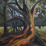 Redland Yurara Art Society - 'Ol'Timer' - Gillian Goldsworthy - Acrylic and Pastel - Painting - Art Exhibition - Major Autumn Exhibition