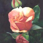 Redland Yurara Art Society - 'Roses Abloom' - Rhonda Brown - Oil - Painting - Art Exhibition - Major Autumn Exhibition