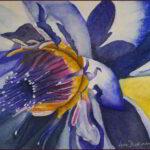 Redland Yurara Art Society - 'Blue Lotus' - Lynn Dickinson - Watercolour - Painting - Art Exhibition - Florals