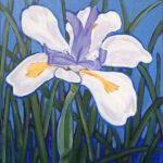 Redland Yurara Art Society - 'Dietes Grandiflora' - Evelyn Kerlin - Acrylic - Painting - Art Exhibition - Florals
