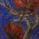 Redland Yurara Art Society - 'Red Bloom' - Annie Radcliffe - Pastel - Painting - Art Exhibition - Florals