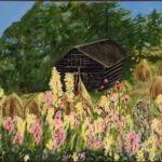 Redland Yurara Art Society - 'Wildflowers' - Arja Tossavainen - Oil - Painting - Art Exhibition - Florals
